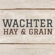 Wachters Hay & Grain logo