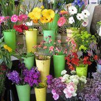 Los Osos Flower Market logo