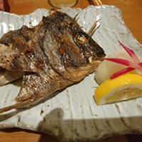 Yamato Japanese Restaurant logo