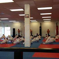 CKD Academy Of Martial Arts logo