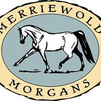 Merriewold Morgans logo