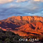 Ojai Valley Defense Fund logo