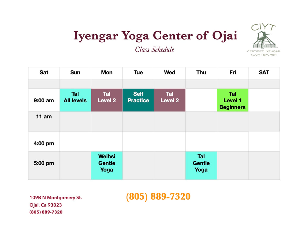 Iyengar Yoga Center Of Ojai logo