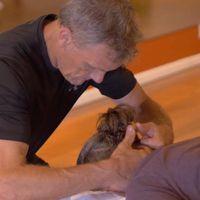 Don's Massage In Ojai logo