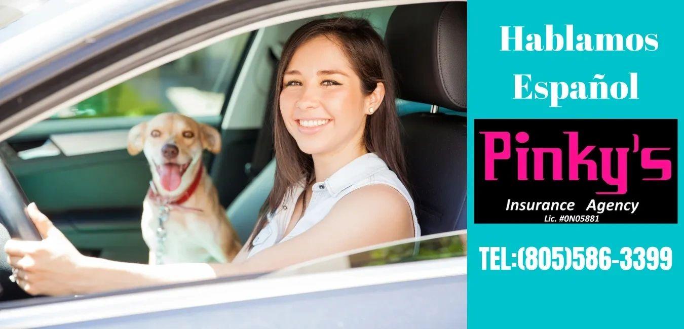 Pinky's Insurance Agency logo