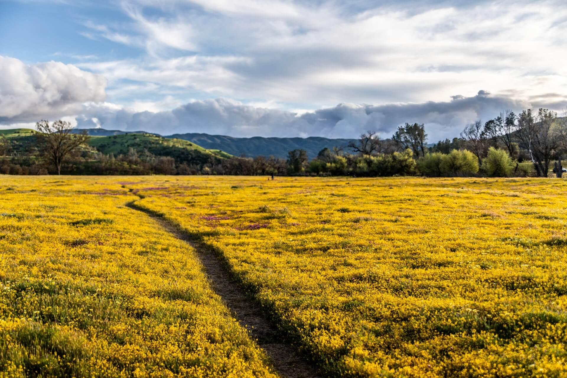 Picture for san luis obispo county